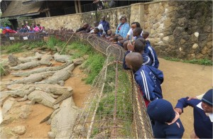 Pupils during educational trip in Mamba village