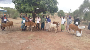 SOH-women-cow-project